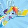 RainbowDashPwny